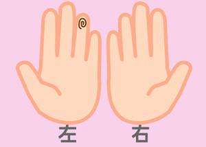 【組合せ】21和・堅_w