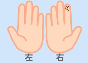 【組合せ】13和・粋_m