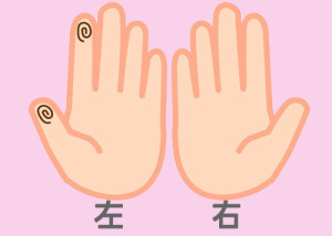 【組合せ】15和・盛_w