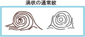 渦_通常紋