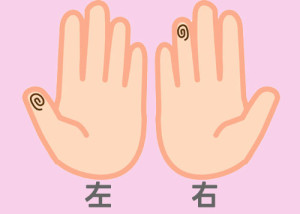 【組合せ】20堅・抗w