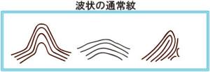 波_通常紋