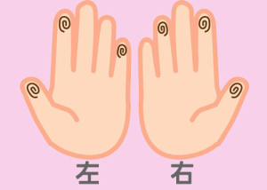【組合せ】11淡・活w